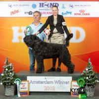 Jef van Joevalshof Winner 2018